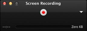 Screen Recording panel